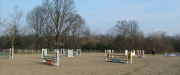 salto-ostacoli-cavalli