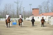 Scuola equitazione FISE