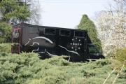 Trasporto cavalli su vendita